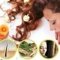 perawatan rambut herbal