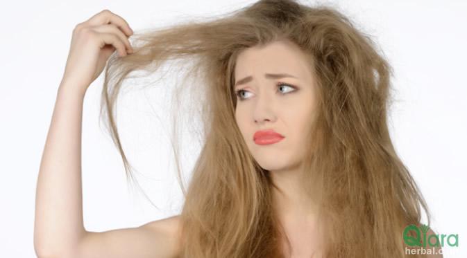 Tips Cara Mengatasi Rambut Kering Secara Alami