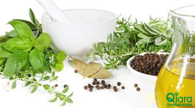 herbal perawatan rambut rontok